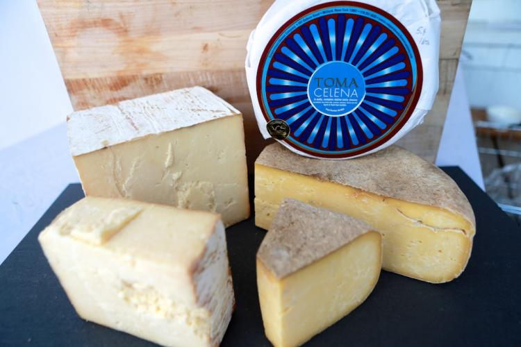 Cheeses for sale at Farm Shop