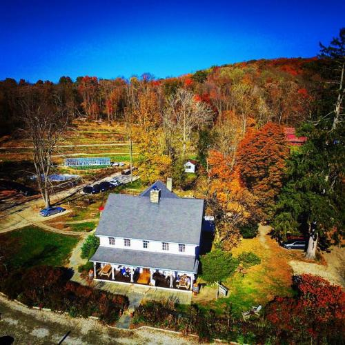 Aerial view of Purdy's Farmer & the Fish