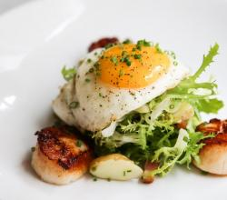 Seared scallops & sunny side up egg