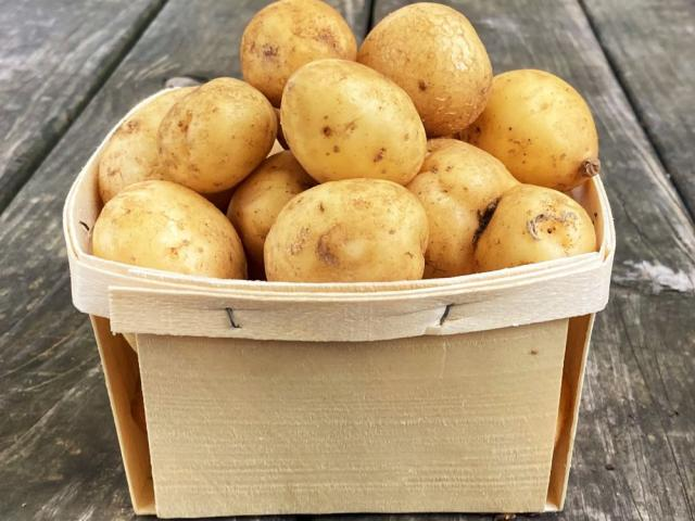 farm belmundo potatoes